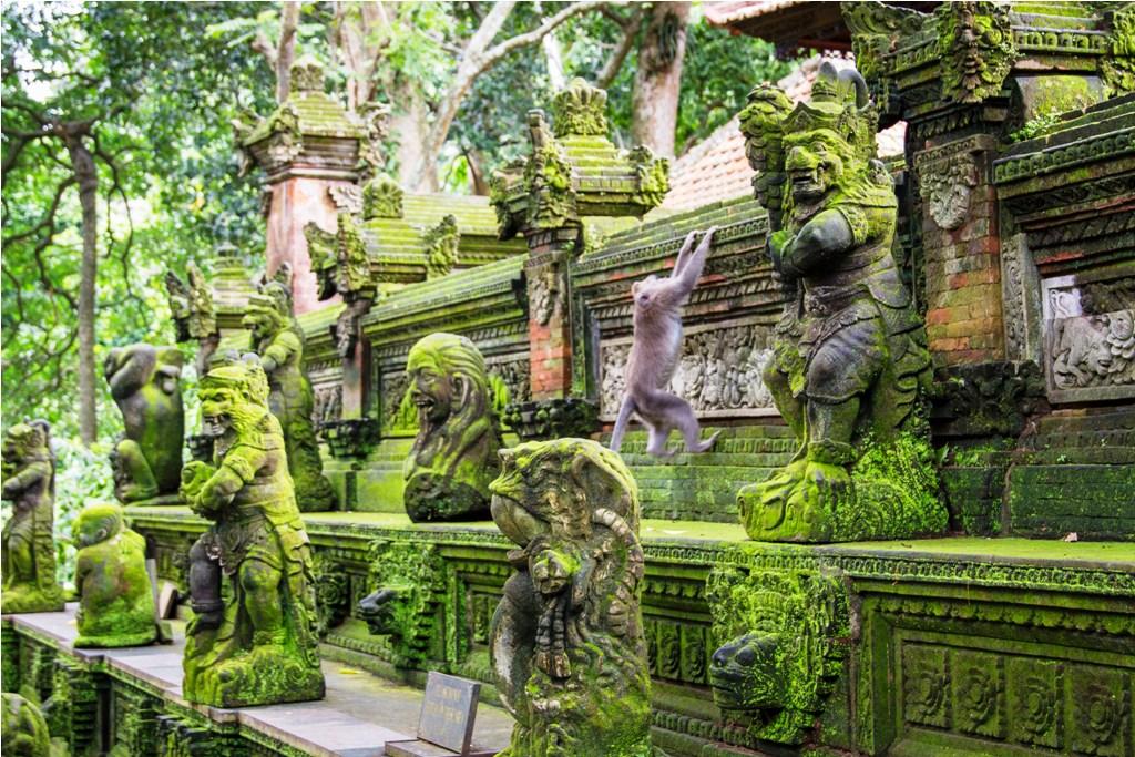 Monyet memanjat dinding candi di Monkey Forest Ubud