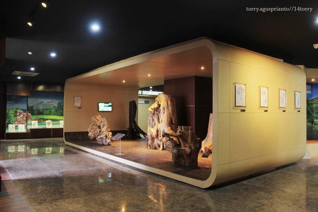 Museum Geopark Batur Kintamani 2 1024x683 » Museum Geopark Batur Kintamani, Wisata Edukasi Terbaru yang Menyenangkan di Bali