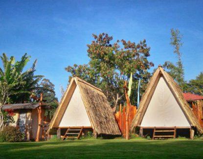 N'jung Bali Camp Songan