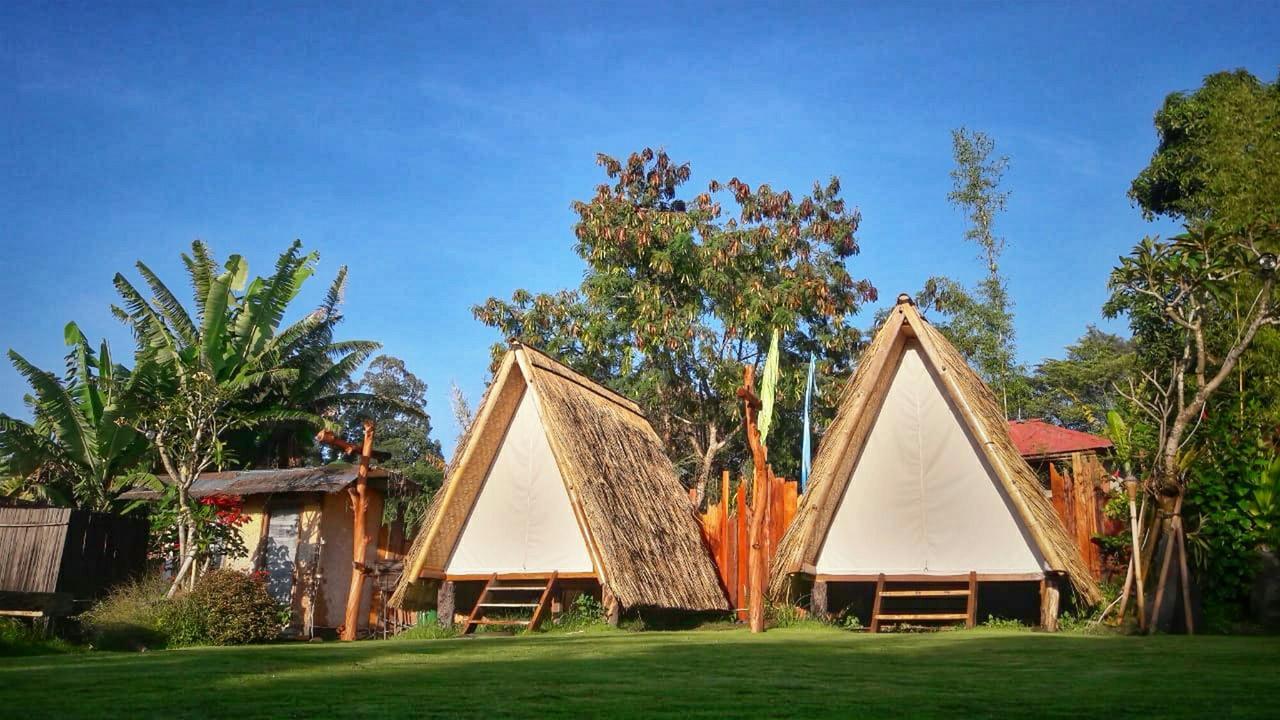 N'jung Bali Camp Songan, Tempat Kemah Asyik dengan Spot Selfie yang Cantik