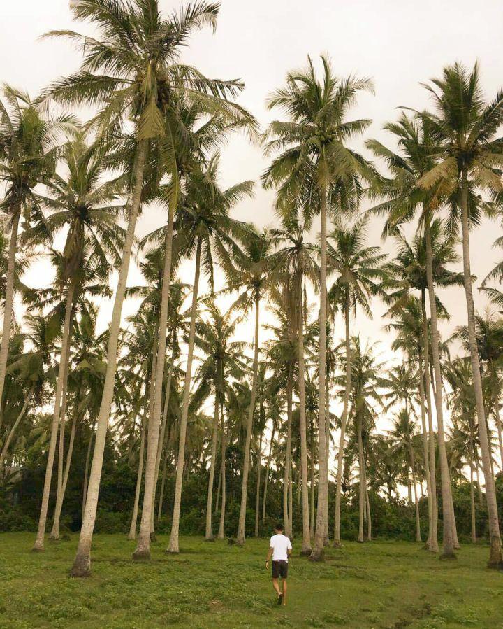 Pantai Batu Tampih Tabanan 2 » Pantai Batu Tampih Tabanan, Pantai Perawan di Bali yang Indah dan Instagramable