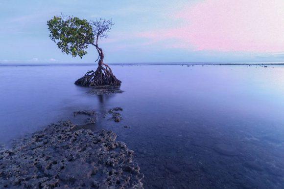 Pantai Pemuteran Buleleng, Wisata Pantai dengan Suasana yang Menenangkan