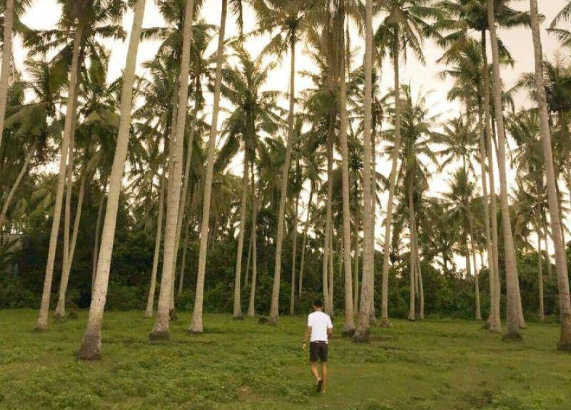Pantai Sepi Pengunjung di Bali 3 » Menjelajahi Pantai Sepi Pengunjung di Bali yang Bernuansa Seperti Hawaii