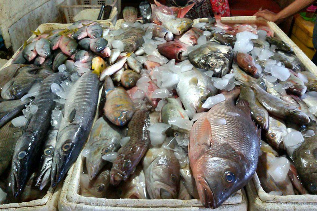 Pasar Ikan Kedonganan Jimbaran