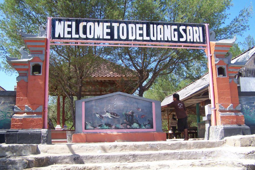 Penangkaran Penyu Deluang Sari 1 1024x682 » Penangkaran Penyu Deluang Sari, Wisata Edukatif Mengenal Lebih Dekat Kehidupan Para Penyu