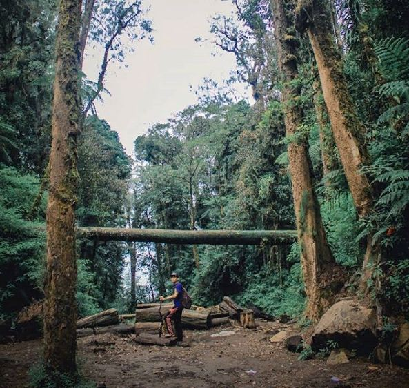 Pucak Mangu Gunung Catur 4 » Menikmati Keindahan Danau Batur dari Pucak Mangu Gunung Catur