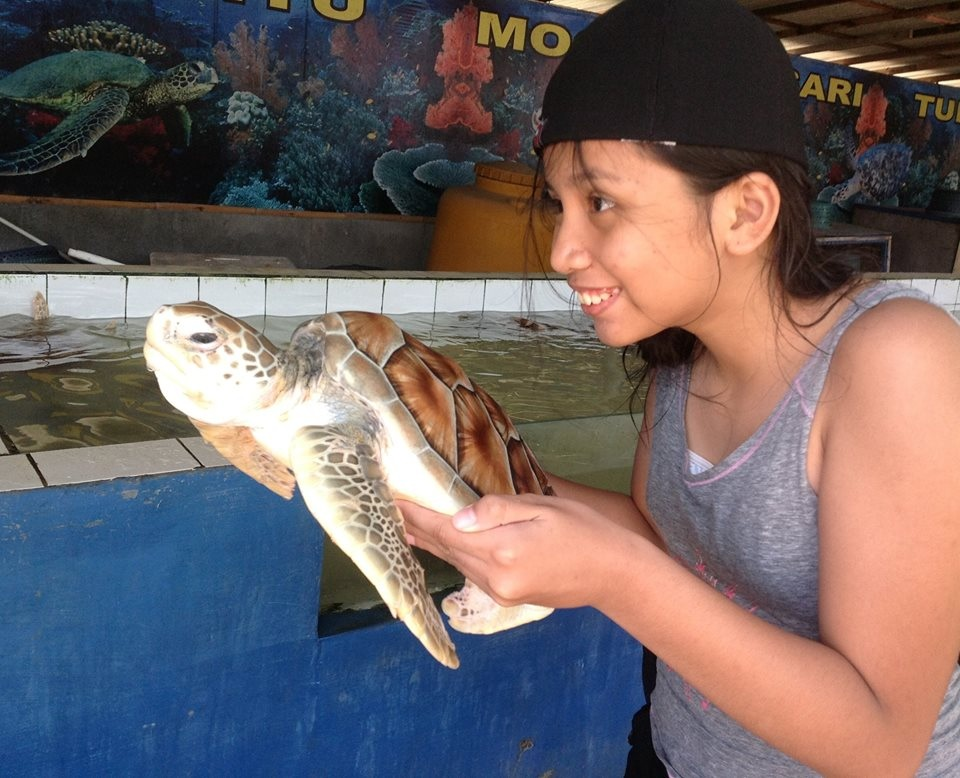 Pulau Penyu Tanjung Benoa