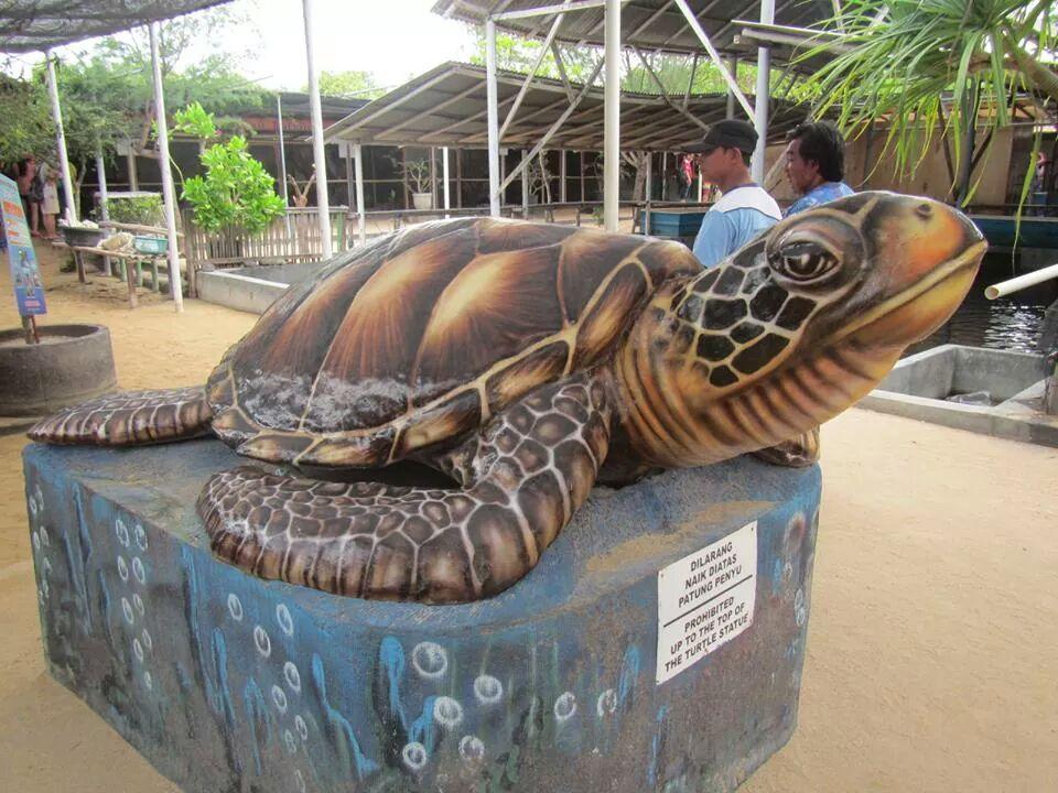 Pulau Penyu Tanjung Benoa, Suguhan Wisata Edukasi yang Menyenangkan di Bali