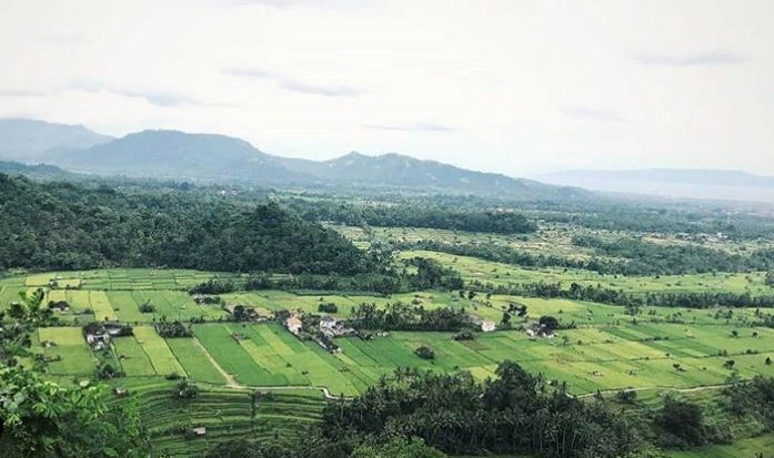 Puncak Jati Desa Timuhun 1 » Puncak Jati Desa Timuhun, Pilihan Tempat yang Tepat Menyaksikan Keindahan Klungkung dari Atas Bukit
