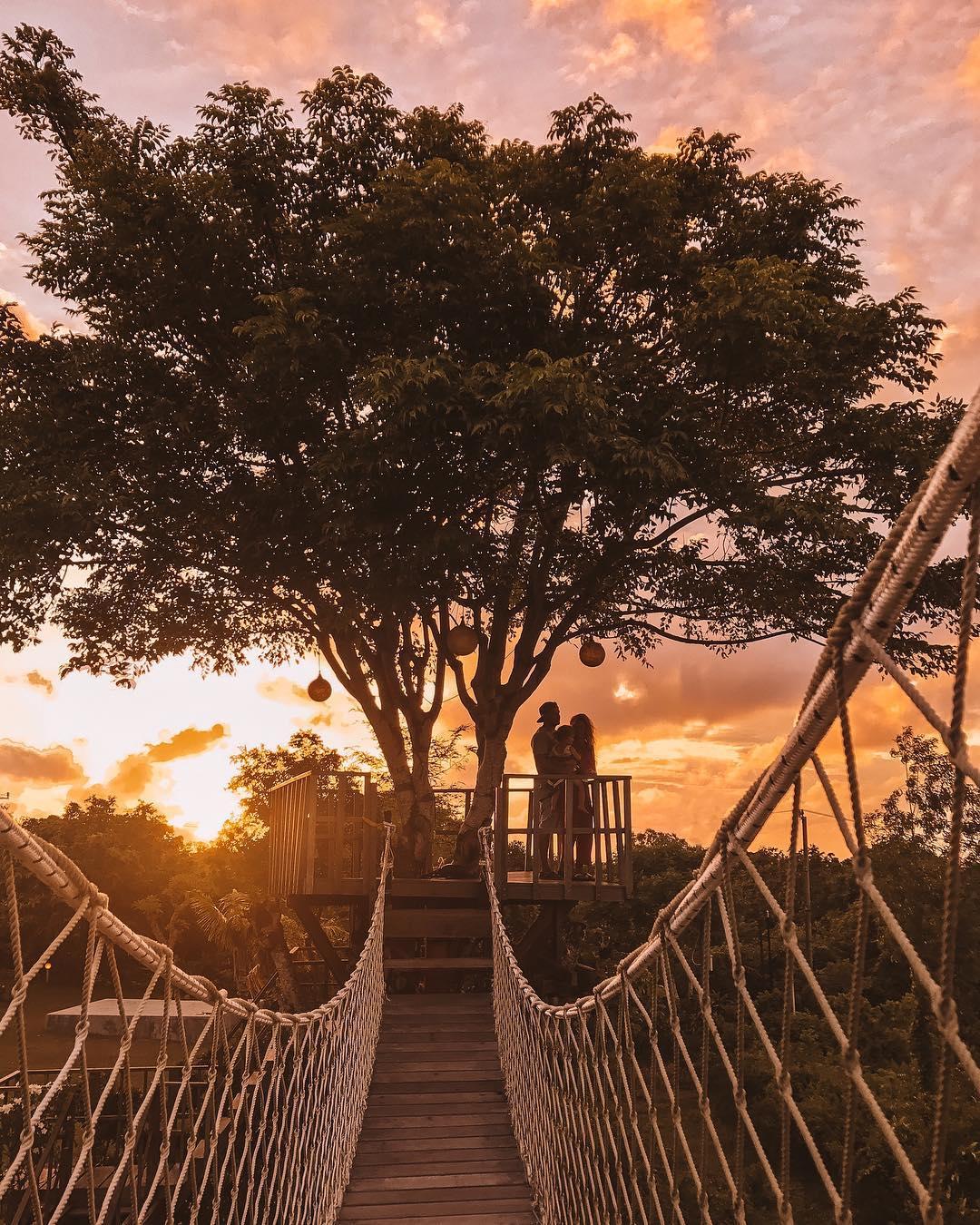 Restoran Dedari Theory Uluwatu, Makan Malam Romantis dengan Sajian Sunset di Atas Pohon