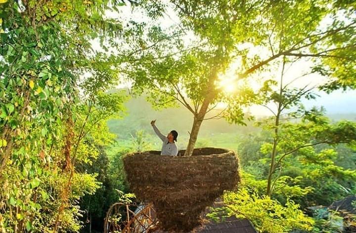 Rumah Pohon Bukit Lemped Karangasem 1 » Menyaksikan Kemegahan Gunung Agung dari Rumah Pohon Bukit Lemped Karangasem