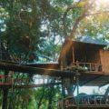 Rumah Pohon Temega Karangasem