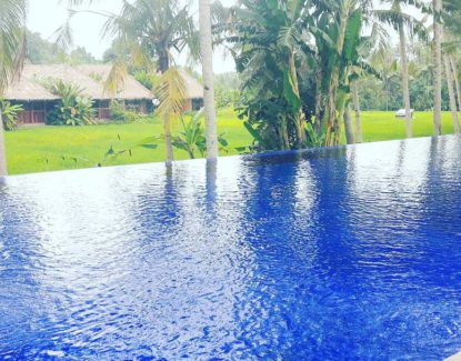 Sapulidi Resort Ubud