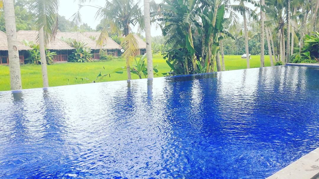 Sapulidi Resort Ubud, Pilihan Penginapan Bernuansa Alami di Bali
