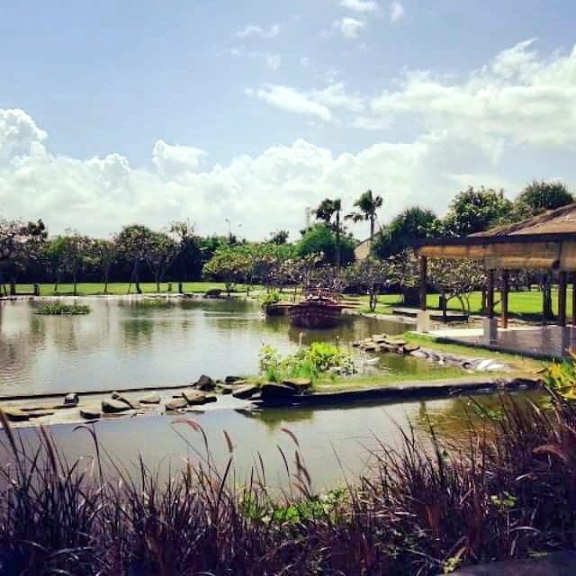 Taman Jepun Bali Frangipani, Wisata Edukatif Menyaksikan Koleksi Bunga Jepun dari Berbagai Negara