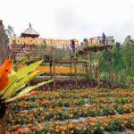 Taman Wisata Edelweiss Karangasem