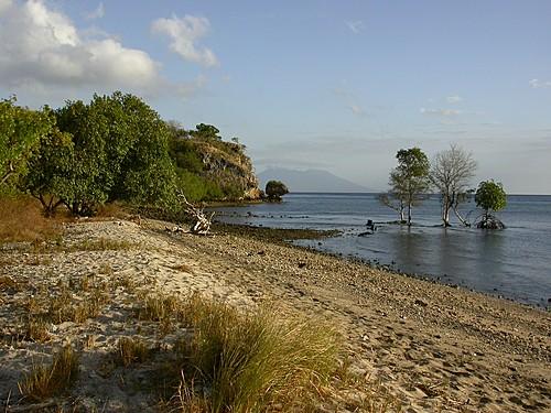Teluk Brumbun Bali Barat