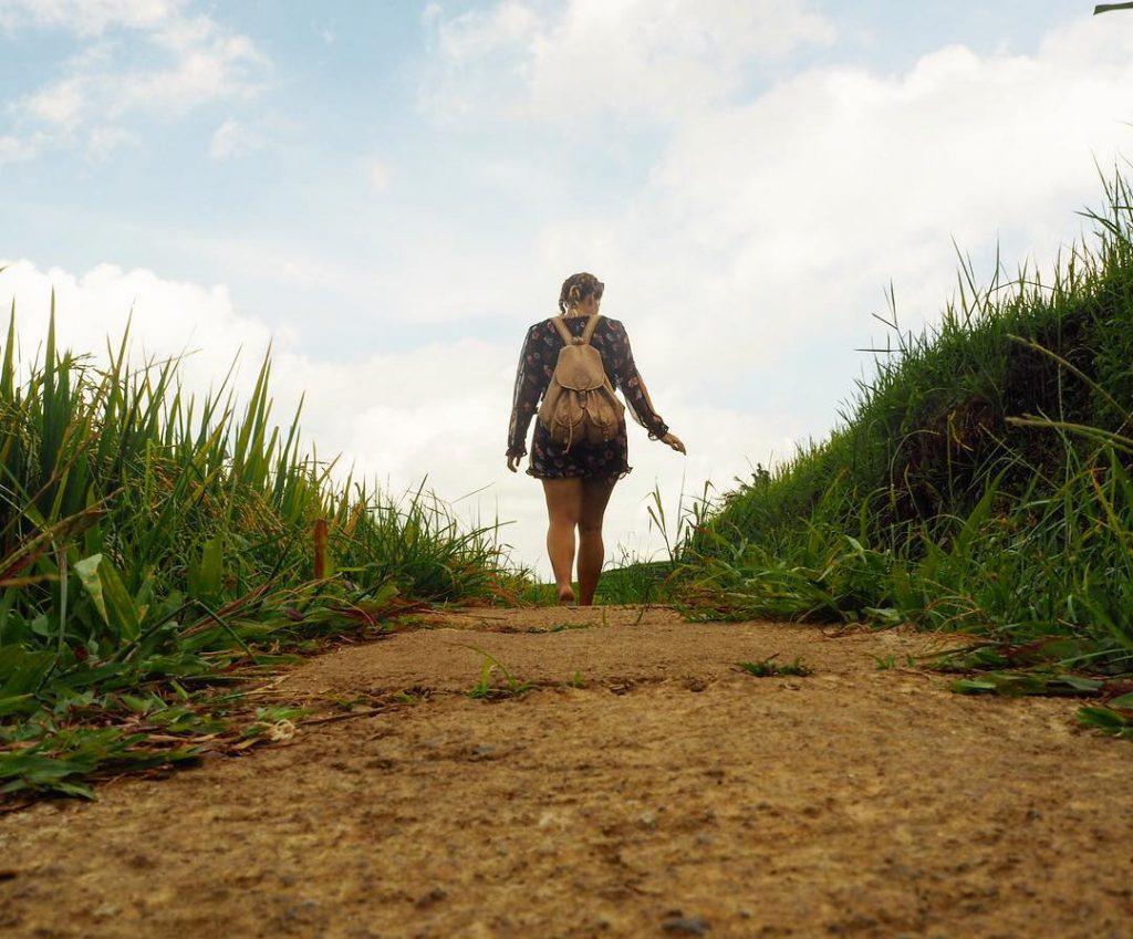 Terasering Jatiluwih Tabanan 2 1024x849 » Terasering Jatiluwih Tabanan, Wisata Alami yang Menyejukkan Mata