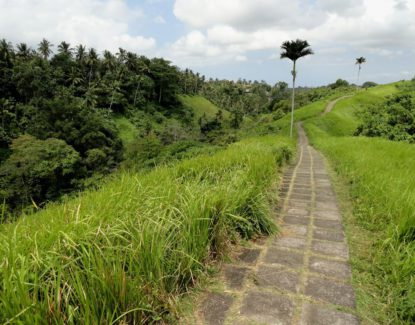 Trekking di Ubud
