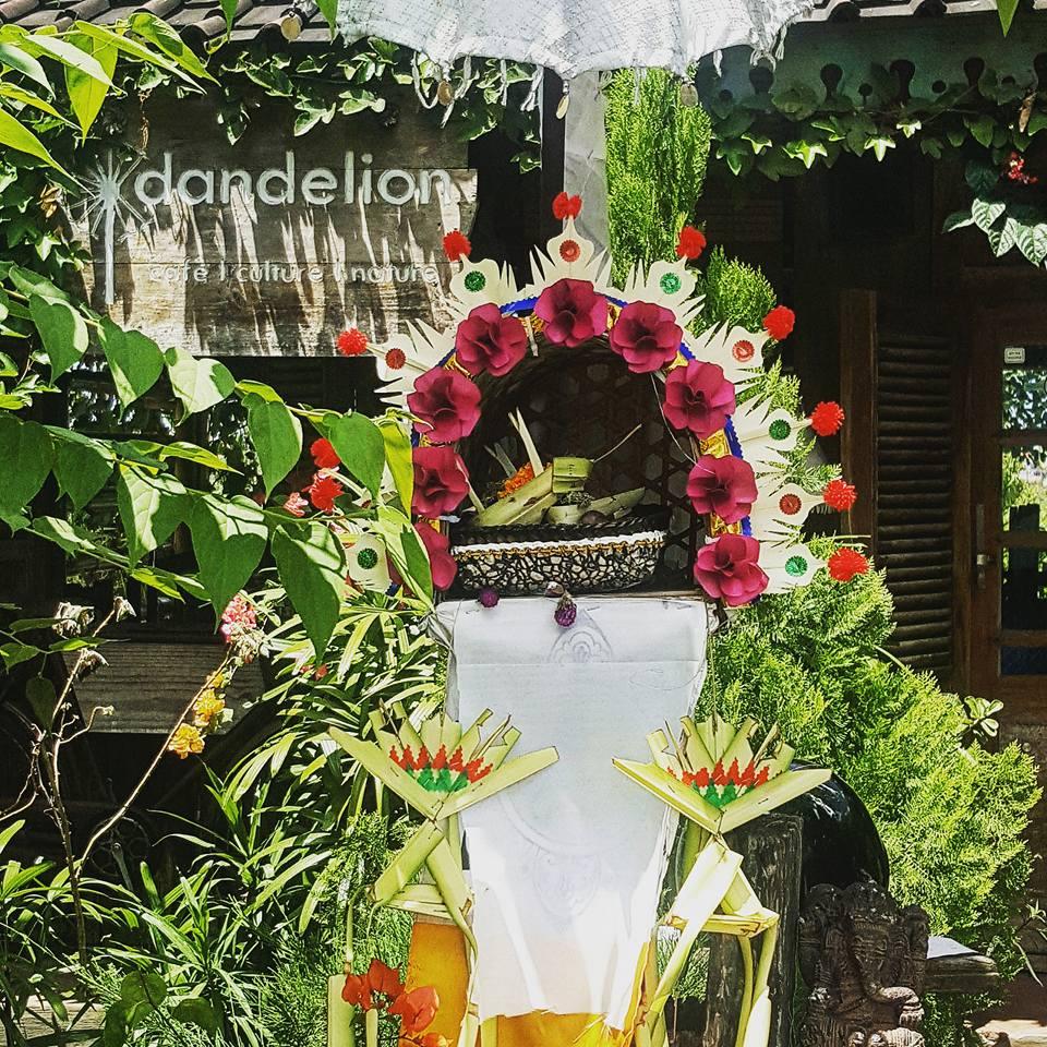 Warung Dandelion Canggu 2 » Warung Dandelion Canggu, Rumah Makan Tradisional dengan Nuansa yang Nyaman dan Menenangkan