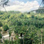 Wisata Ayunan Hits di Bali