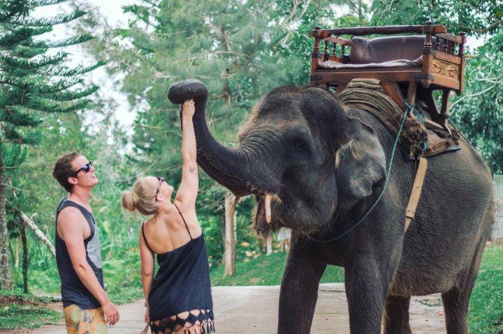 Wisata Naik Gajah di Bali 1 » Ingin Mencoba Pengalaman Wisata Naik Gajah di Bali? Ini Pilihannya!
