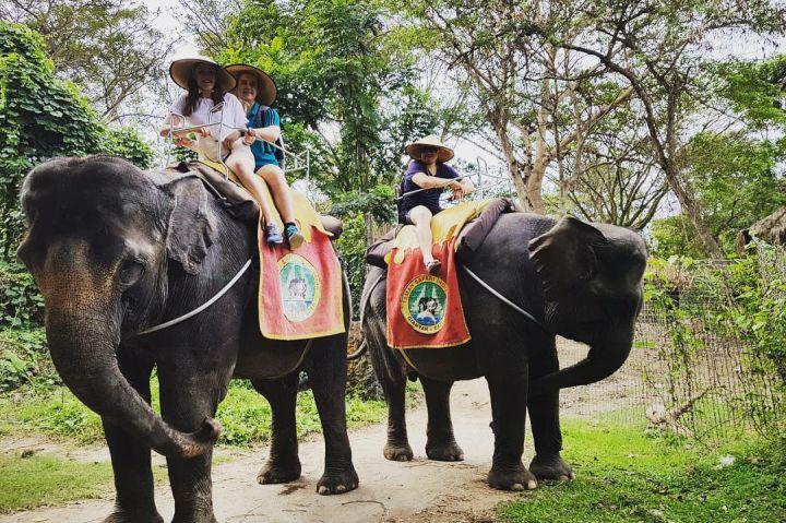 Wisata Naik Gajah di Bali 3 » Ingin Mencoba Pengalaman Wisata Naik Gajah di Bali? Ini Pilihannya!