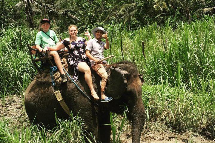 Wisata Naik Gajah di Bali 5 » Ingin Mencoba Pengalaman Wisata Naik Gajah di Bali? Ini Pilihannya!