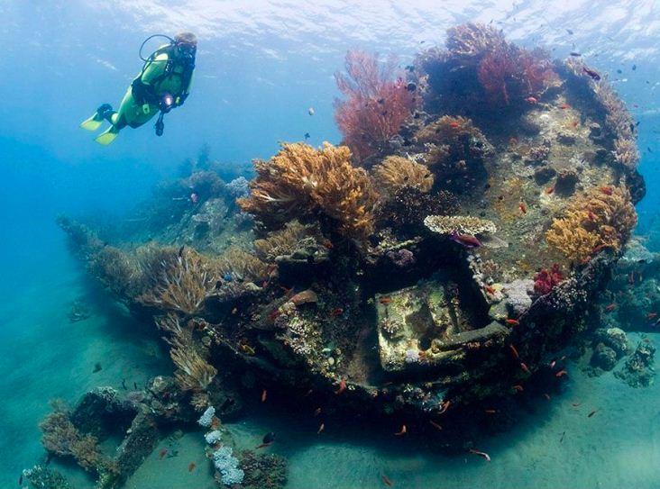 amed diving spot japanese wreck » 4 Amed Diving Spot yang Menjadi Surga untuk Pencinta Aktivitas Menyelam
