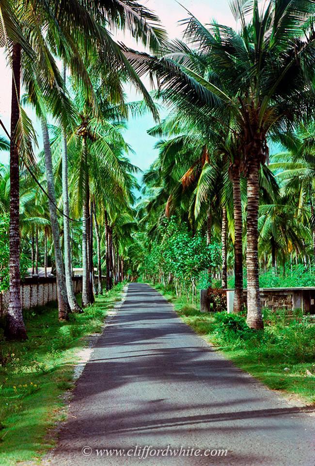 bali era 70an 3 » Melihat Pesona Bali Era 70-an yang Masih Alami dan Penuh Nostalgia