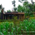 baliwoso camp pic 120x120 » Baliwoso Camp: Pilihan Unik untuk Tinggal Selama Menghabiskan Waktu di Kintamani