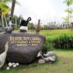 bebek tepi sawah ubud bali 150x150 » Wisata Subak Catur Angga Batukaru Tabanan, Lanskap Cantik dari Pulau Dewata