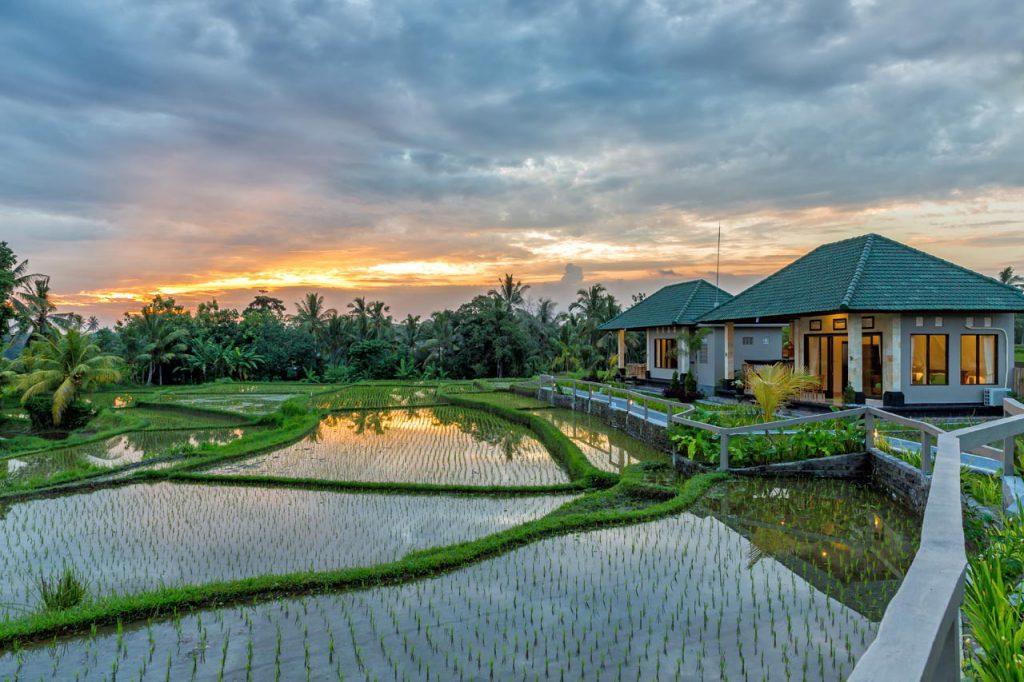 cahaya ubud villa 1 1024x682 » Cahaya Ubud Villa, Penginapan Romantis di Tengah-Tengah Hamparan Sawah
