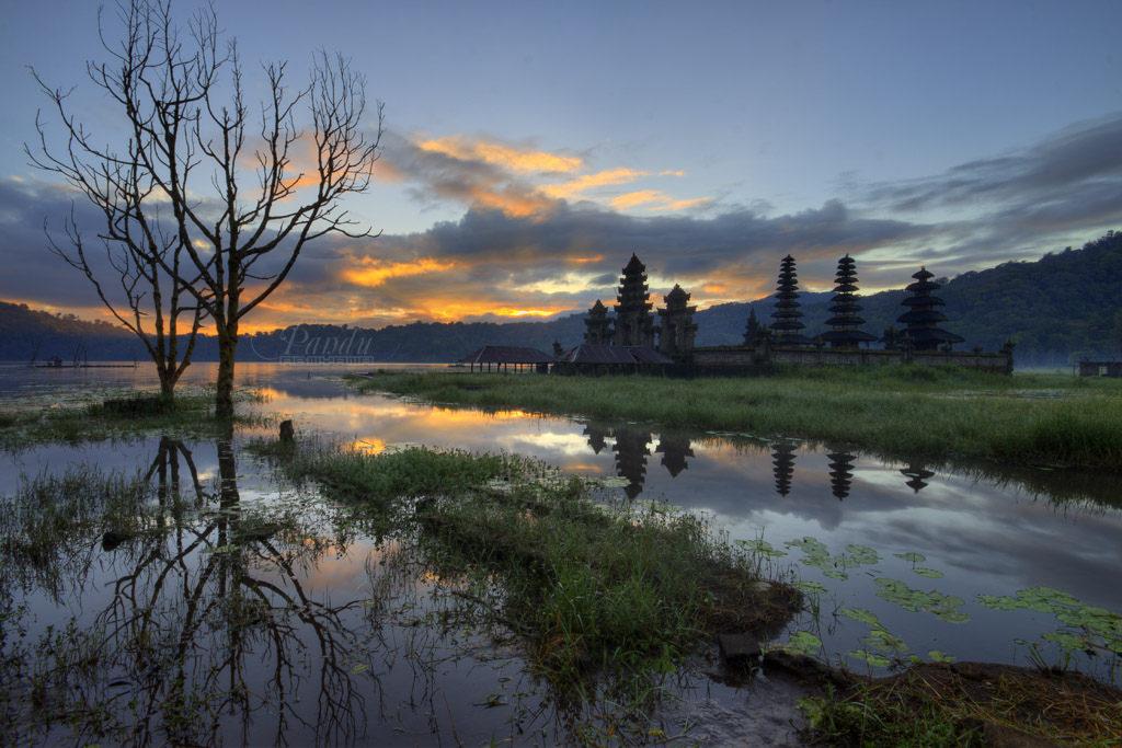 Danau Kembar Buleleng, Dua Danau dengan Pemandangan Eksotis yang Menyegarkan Mata