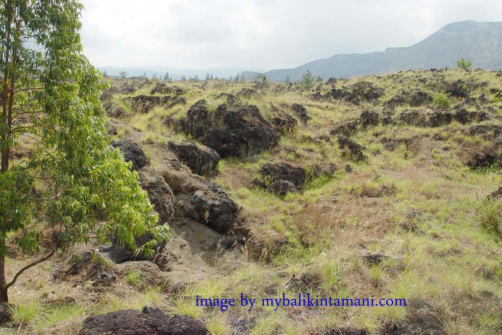 destinasi wisata kintamani gunung batur » Cara Tepat Menikmati Liburan Berkualitas di Kintamani dan Sekitarnya