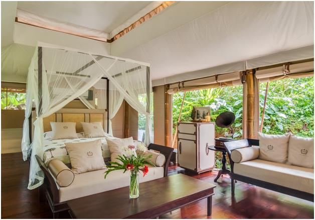 glamping di sebatu sanctuary » Inilah 4 Glamping Keren di Bali, Pemandangan Luar Biasa dengan Pengalaman Tak Terlupa