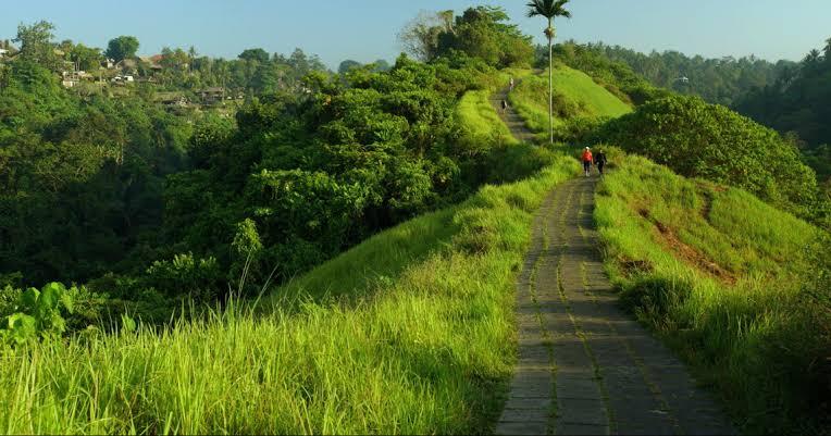 5 Rekomendasi Hotel Murah di Dekat Campuhan Ridge Walk Ubud