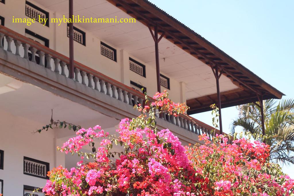 hotel surya kedisan kintamani » Hotel Surya: Pilihan Hotel Berkualitas Dengan Harga Yang Lebih Terjangkau