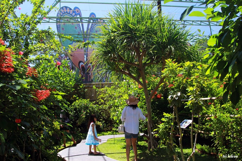 kebun binatang di Bali 5 » 5 Pilihan Kebun Binatang di Bali untuk Sarana Liburan Edukatif Bersama Anak