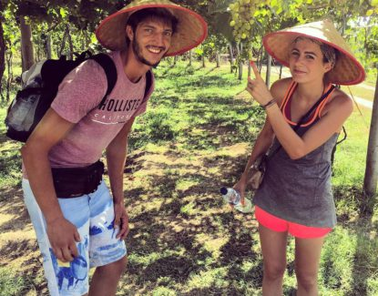 kebun buah di Bali