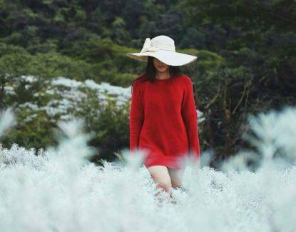 padang bunga kasna karangasem