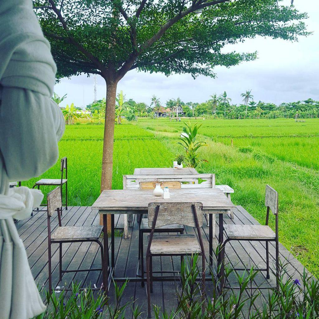 restoran nook bali 1 1024x1024 » Restoran Nook Bali, Tempat Makan Unik Instagramable di Seminyak