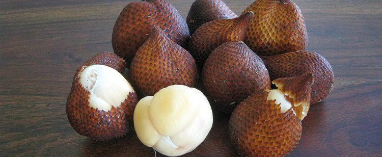 salak gula pasir khas Bali 2 750x308 - 5 Jenis Buah Salak dengan Cita Rasa dan Bentuk yang Beragam