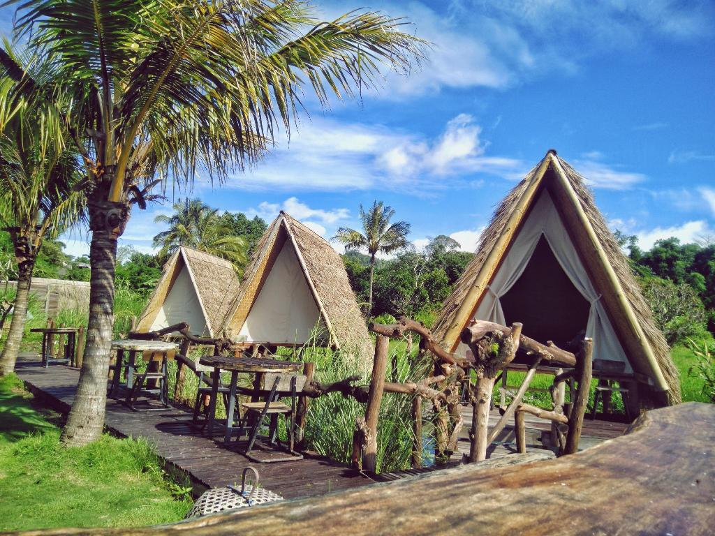 tempat camping di kintamani 2 » Rekomendasi 5 Tempat Camping di Kintamani Beserta Harganya