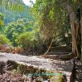 trunyan kintamani bali 120x120 » Wisata Pemakaman Trunyan Kintamani, Bali